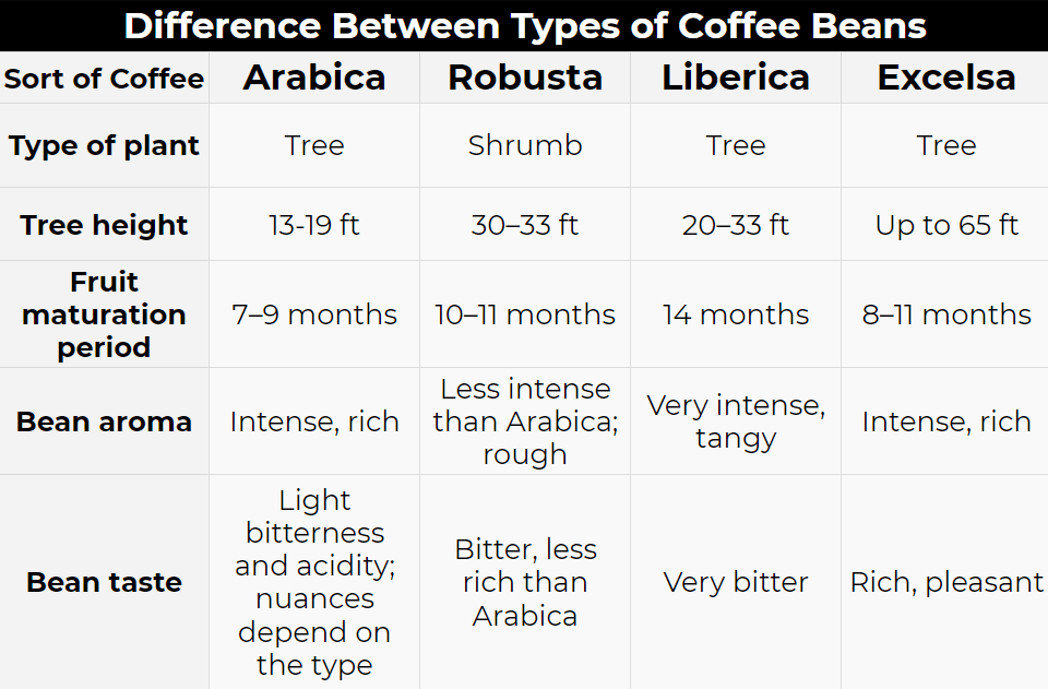 Difference Between Types of Coffee Beans