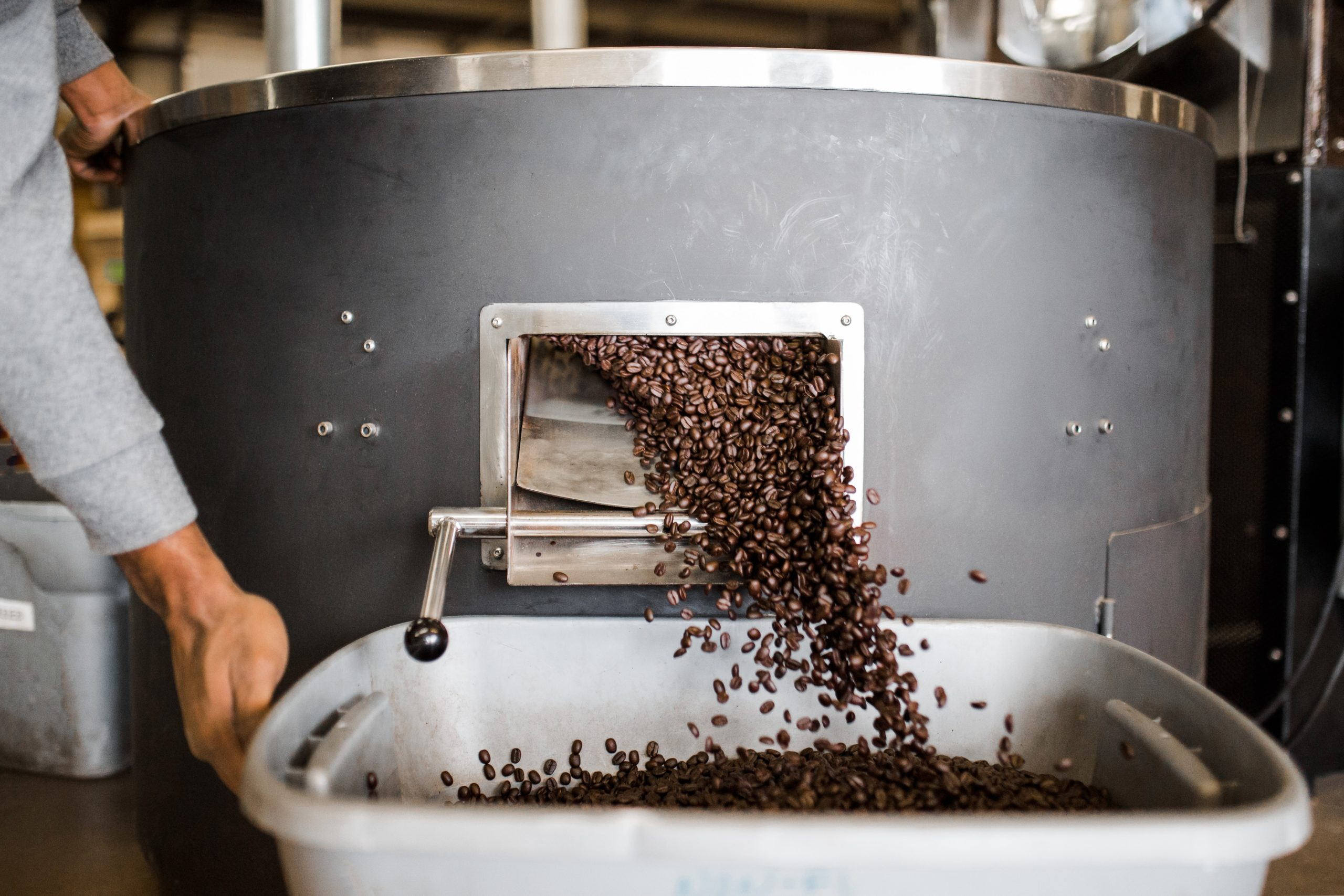 What Are the Main Differences between Coffee Roast Levels